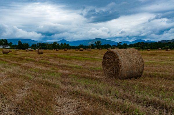 A haystack thumbnail