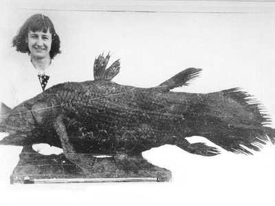 Marjorie Courtenay-Latimer stands with the taxidermied remains of her groundbreaking discovery.