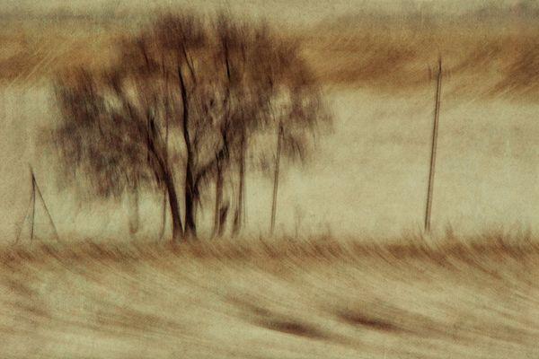 Winter sketch thumbnail
