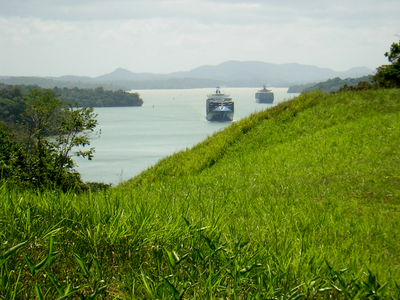 Many terrestrial birds disappeared in Barro Colorado Island, in the Panama Canal, despite their abundance in adjacent mainland forests, because they could not cross Gatun Lake to maintain populations on the island. (Ghislain Rompre)