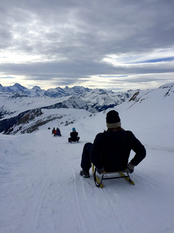The world's longest sled run in Grindelwald, Switzerland thumbnail