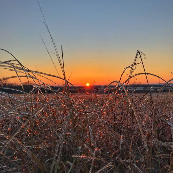 Sunset Over a Frozen Battlefield thumbnail