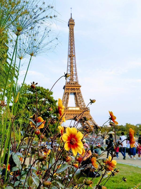 Trocadero Plaza thumbnail