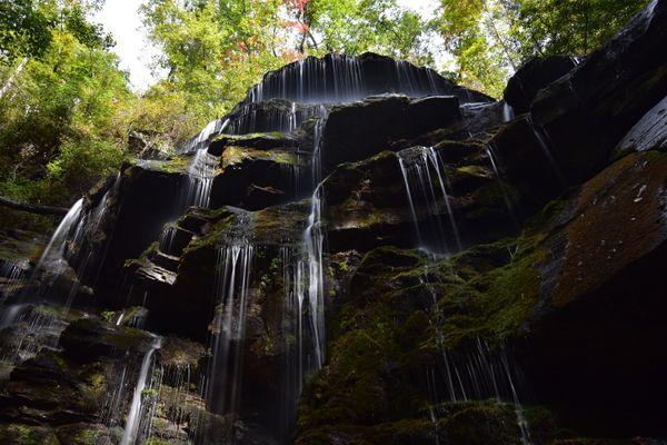 Yellow Branch Falls thumbnail