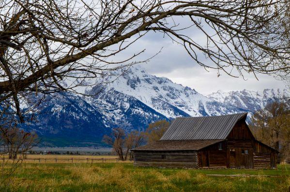 Moultons barn Grand Tetons thumbnail