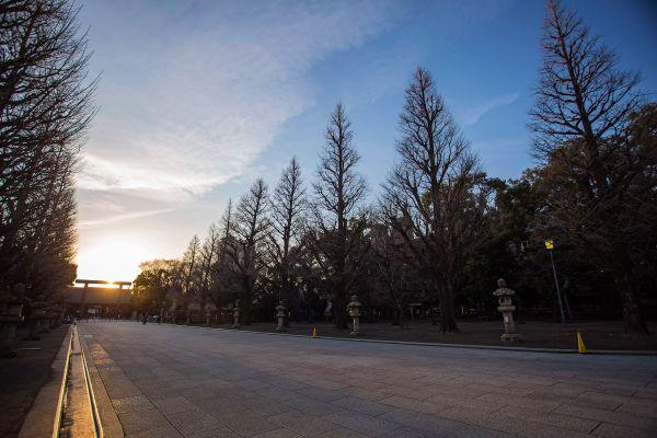 Yasukuni thumbnail