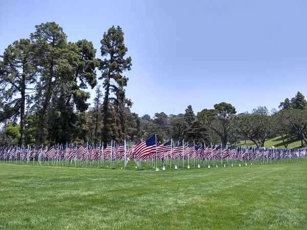 Memorial Flags thumbnail