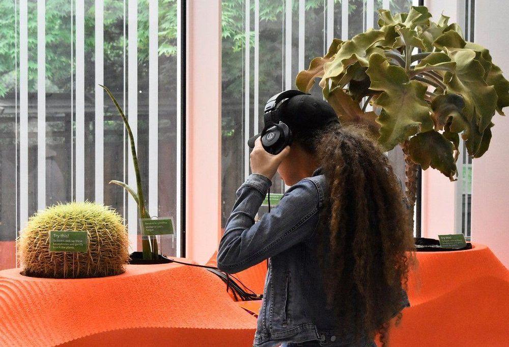 Plant-Sounds-Brooklyn-Botanic-Garden-Adrienne-Adar-1024x683.jpg