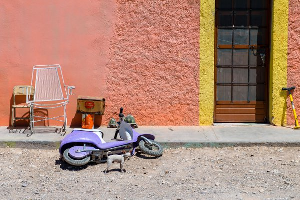 The Purple Scooter thumbnail