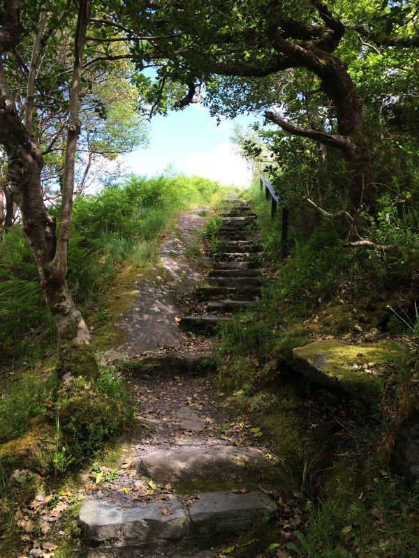 Stairway to... thumbnail