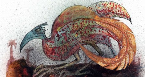 Double-banded Argus, by Ralph Steadman