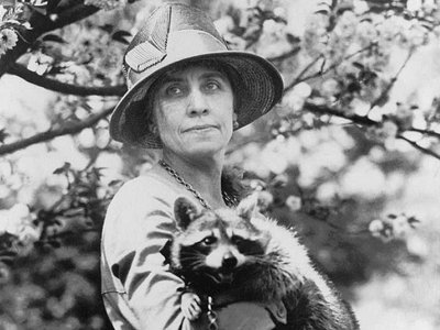 First Lady Grace Coolidge and Rebecca, the raccoon she and her family kept as a pet