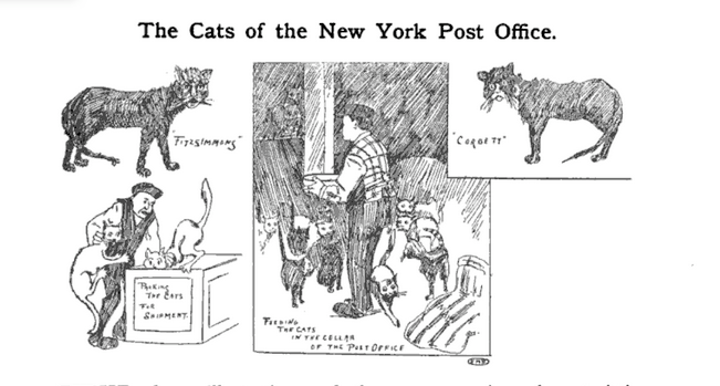A Brief History of Post Office Cats