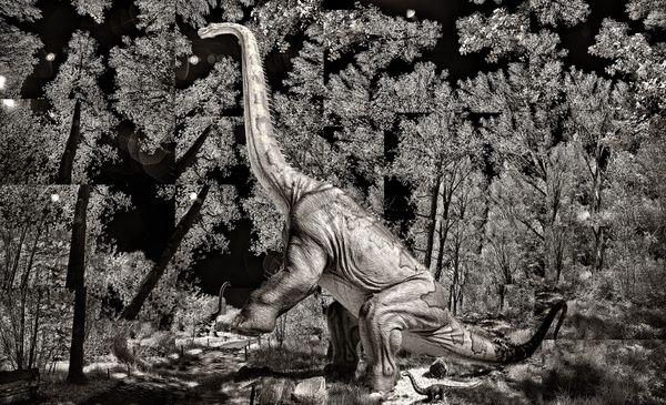 Dino Walk in Nature 7 thumbnail