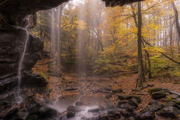 Autumn's Splendor thumbnail