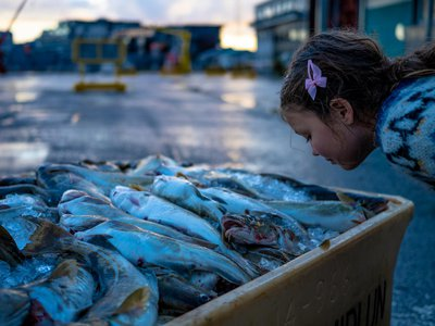 Rotten fish contain a smellable chemical found in bad breath, faeces and blood, but some people identified it as sweets or roses.