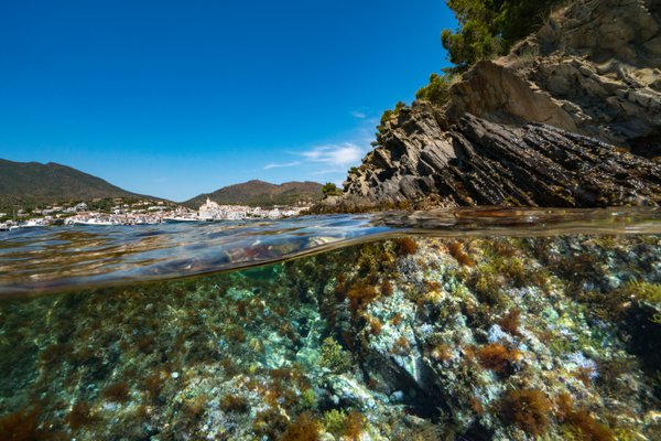 A different point of view of Cadaqués thumbnail