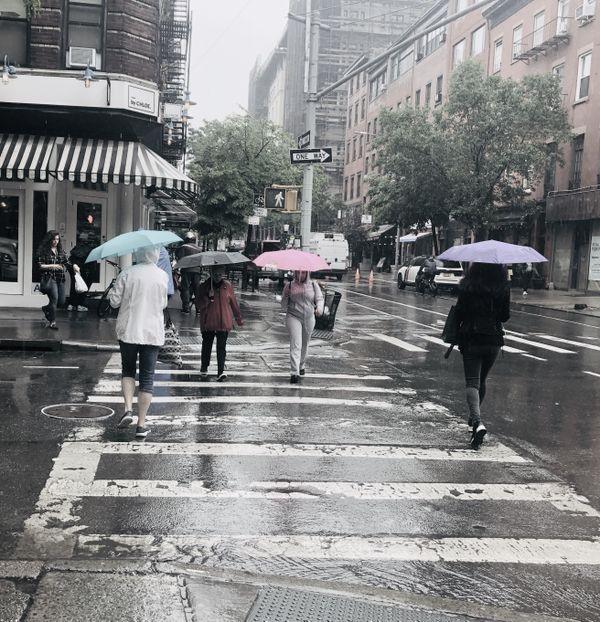 Rainy Day In New York City thumbnail