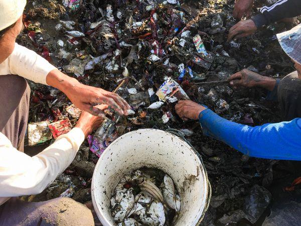 The Sea of Trash part 1 thumbnail