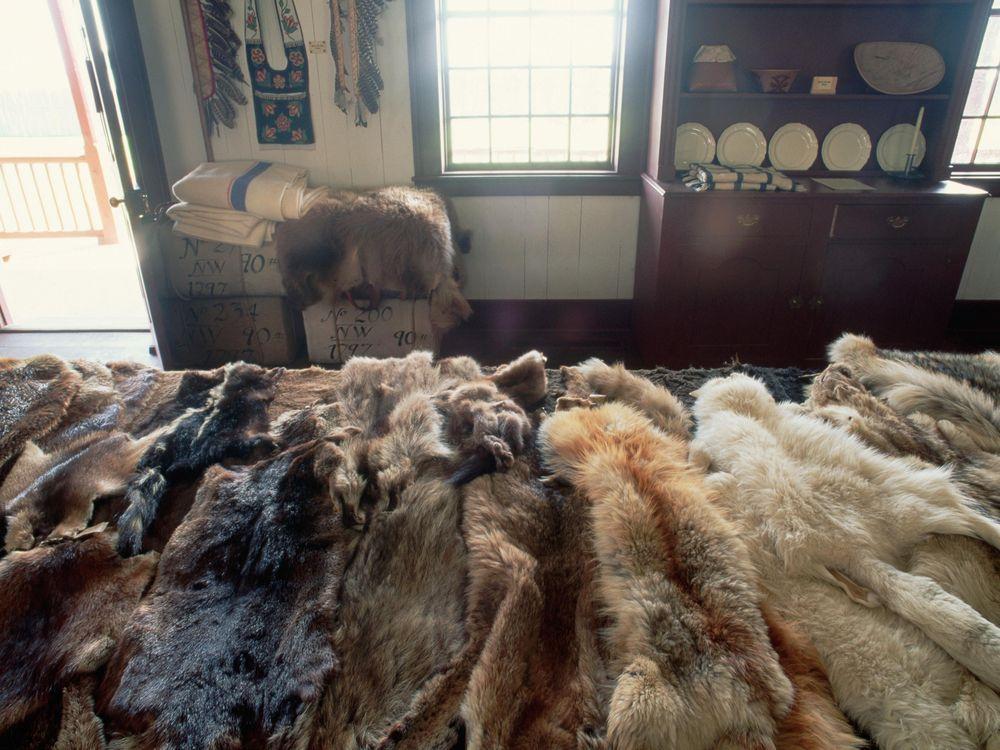 fur trade display