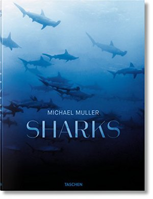 Preview thumbnail for Michael Muller: Sharks, Face-to-Face with the Ocean's Endangered Predator