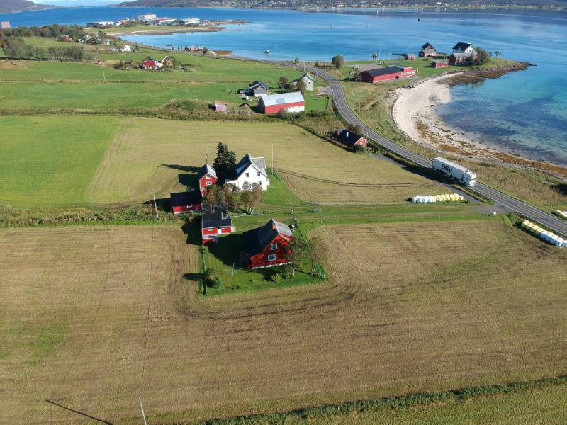 Archaeology Student Finds Viking Trading Post in Norway