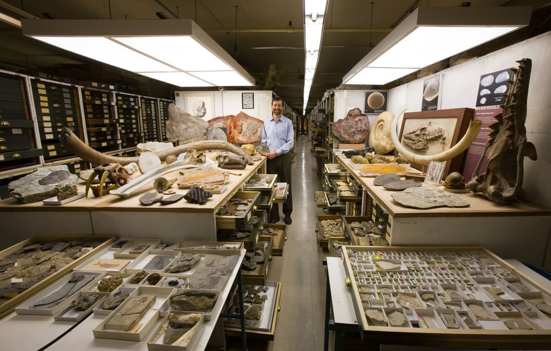 Person with fossils laid out in a museum storage space