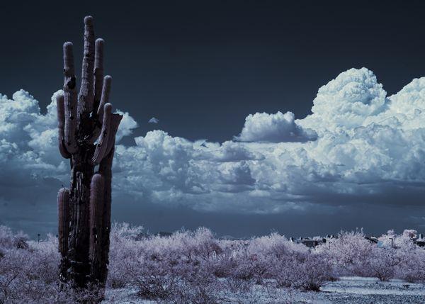 Cloudscape Desert-Infrared thumbnail
