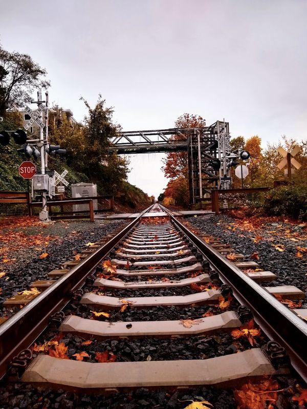Boulevard railroad Bellingham thumbnail