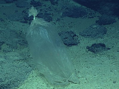 Plastic ice bag found by a NOAA expedition to the Marianas in 2016