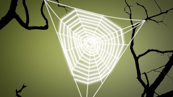 Preview thumbnail for Ask Smithsonian: How Do Spiders Make a Web?
