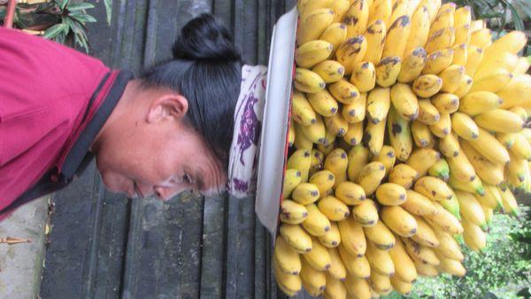 50.000 Rupie Banana  thumbnail