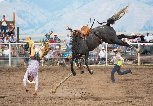 Champion bronco bucks champion rider at Helmville, MT Rodeo thumbnail