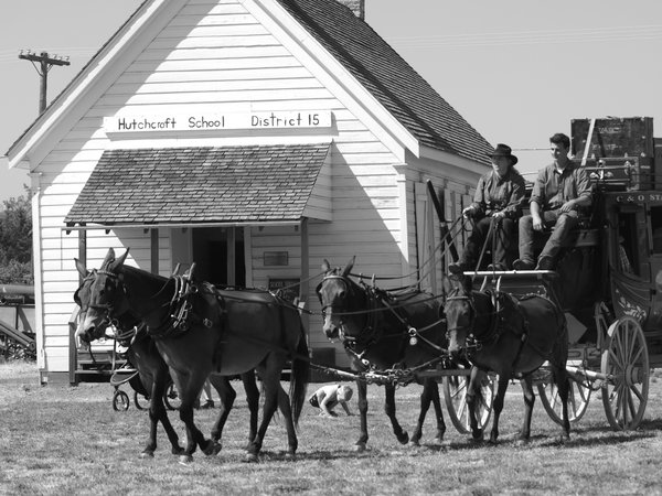 horse and buggy days thumbnail