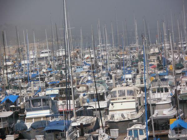 Santa Barbara Harbor Marina Sail-Fishing-Yacht Boats in Fog thumbnail