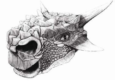20110520083116minotarasaurus.jpg