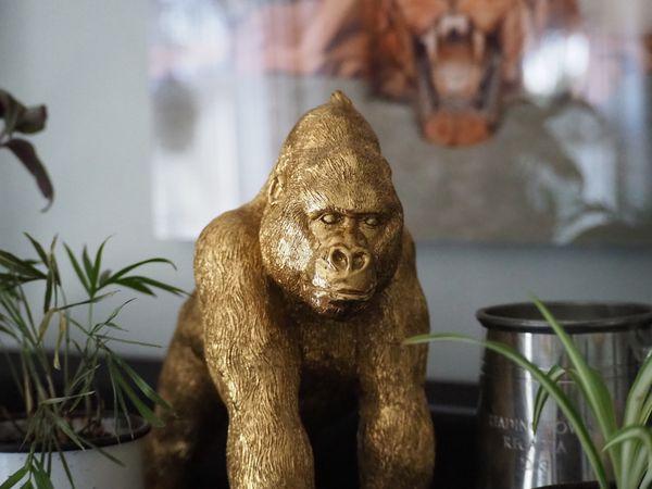 Golden Gorilla From HomeGoods thumbnail
