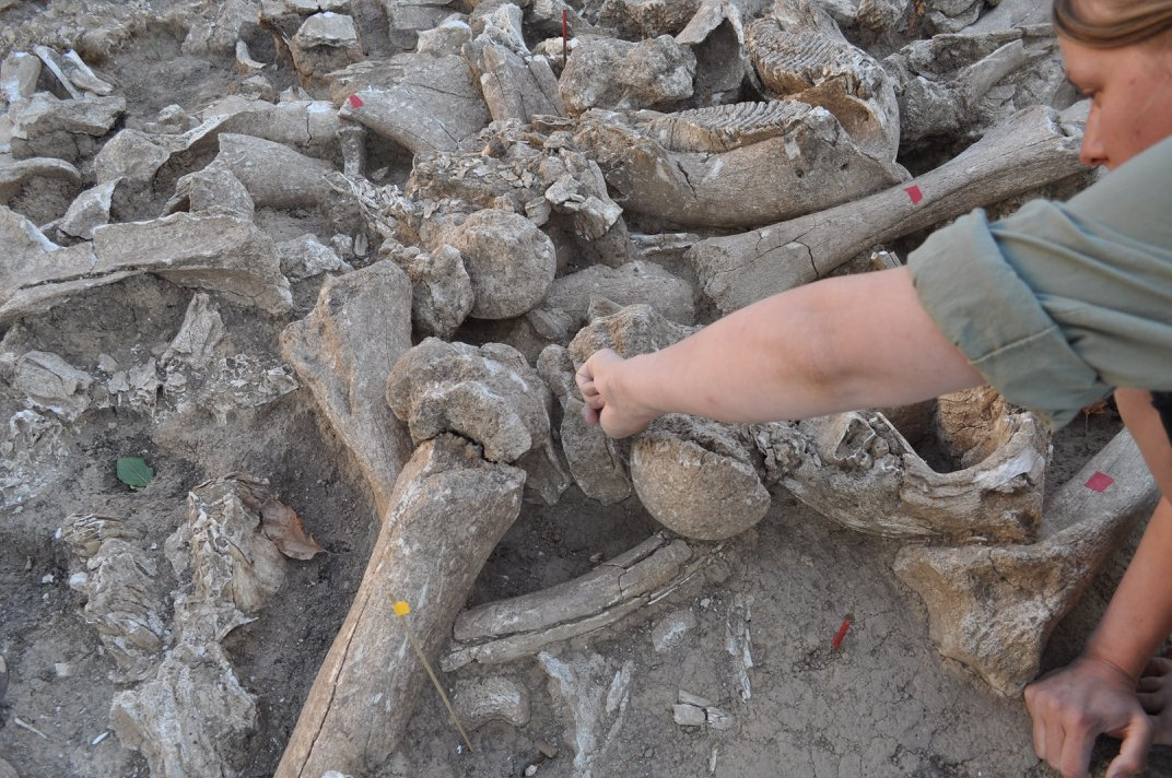 A Mysterious 25,000-Year-Old Structure Built of the Bones of 60 Mammoths
