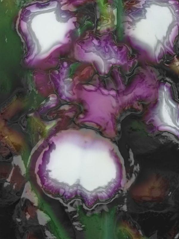 Iris With an X-Glow thumbnail