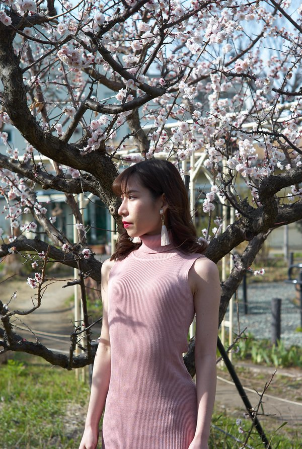 Sakura and girl thumbnail