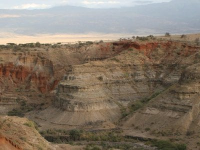 Nearly a century ago, archaeologists started to shift the focus of human origins research from Europe to Africa's 'cradles of humankind' like Oldupai (Olduvai) Gorge in Tanzania.