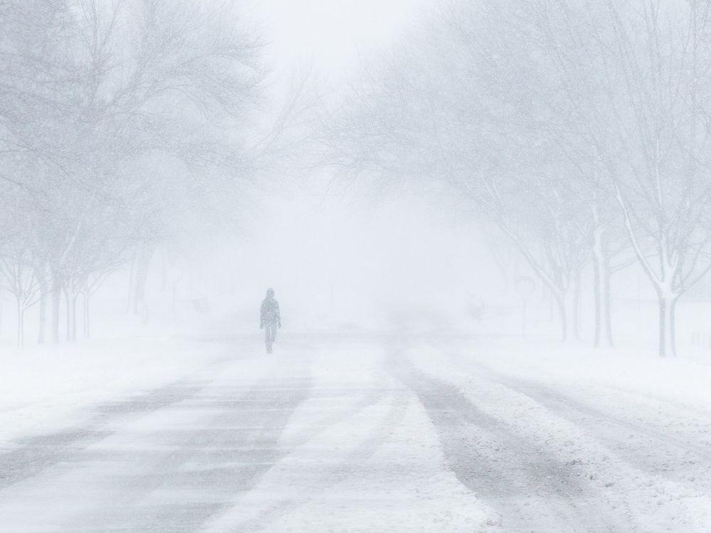 blizzard-1972645_1280.jpg