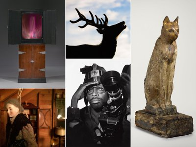 This year's crop of Smithsonian winter shows is as disparate as it is delightful.