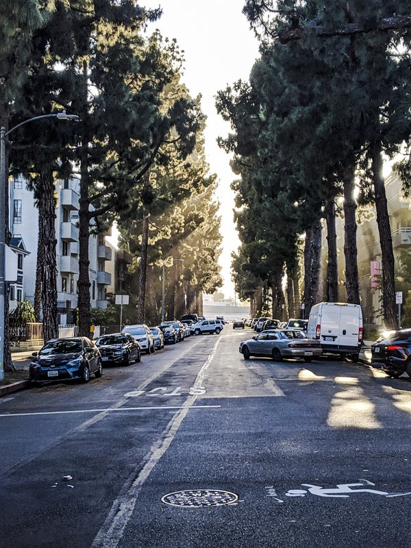A Los Angeles street in early evening thumbnail