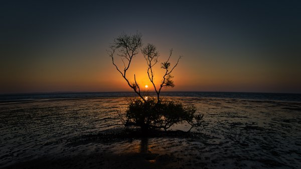 Sunset on Fraser Island thumbnail