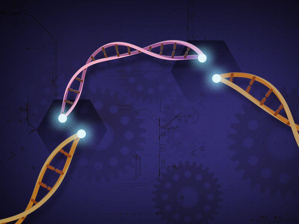 CRISPR Art