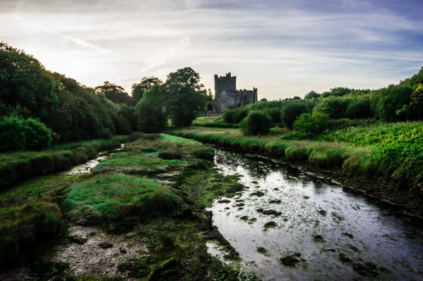 A view of Tintern Abbey, Co. Wexford in Ireland. thumbnail