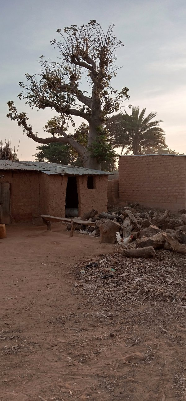 Rural view from Northern Nigeria thumbnail