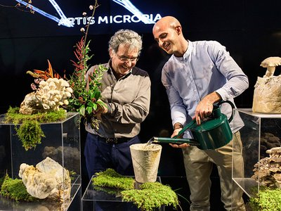 """A permanent exhibition at Micropia in Amsterdam, the world's only museum dedicated to microbes, called """"A Fungal Future"""" showcases an array of everyday objects made from fungi."""