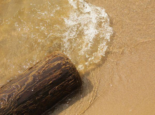 Occoquan Bay Shore thumbnail